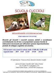 incontri cuccioli settembre 2019 (2)